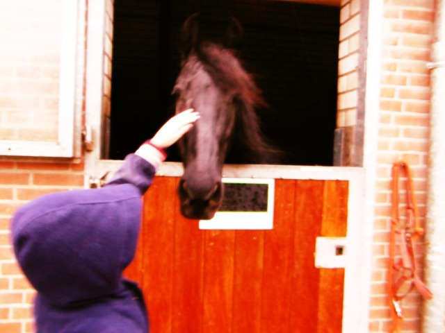 Is with horse