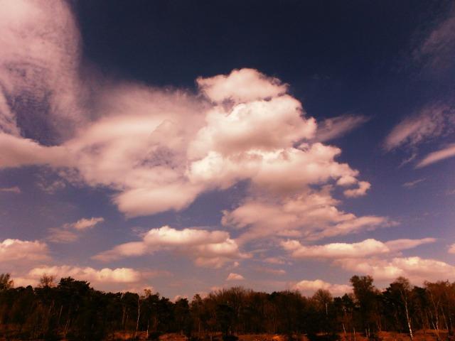Cloudy at the lake