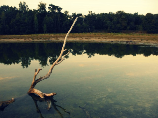 Lake mm